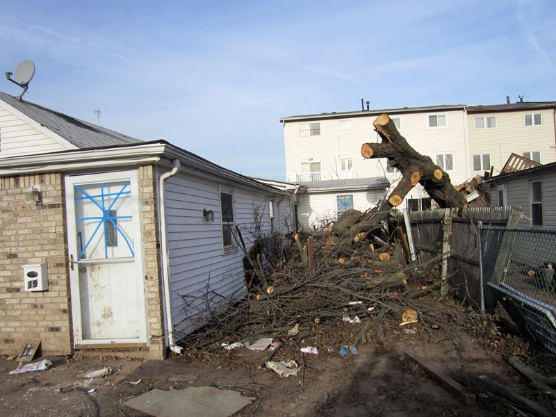 Staten Island - Wind and Flood